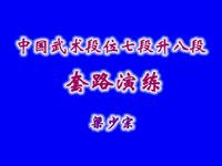 太祖长拳【梁少宗】[七段升八段] ()