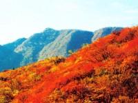 嵩山美景 (32)